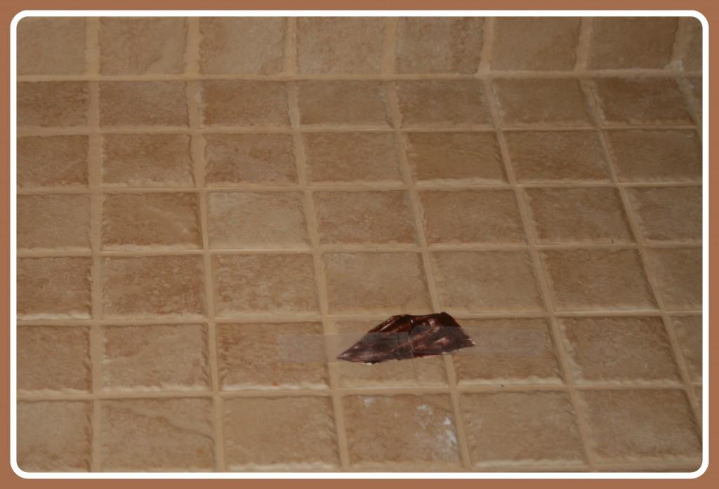 april fools pranks poop in shower