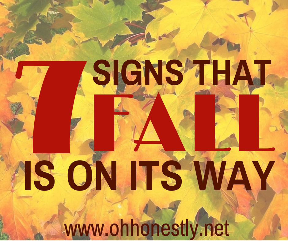 Seven Signs That Fall is on Its Way