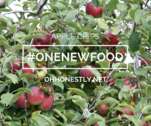 One New Food: Apple Recipes