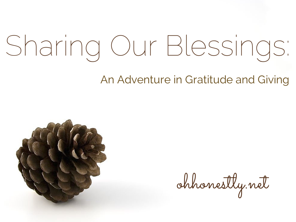 Sharing Our Blessings: An Adventure in Gratitude and Giving