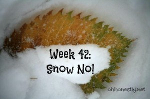 Week 42: Snow No!