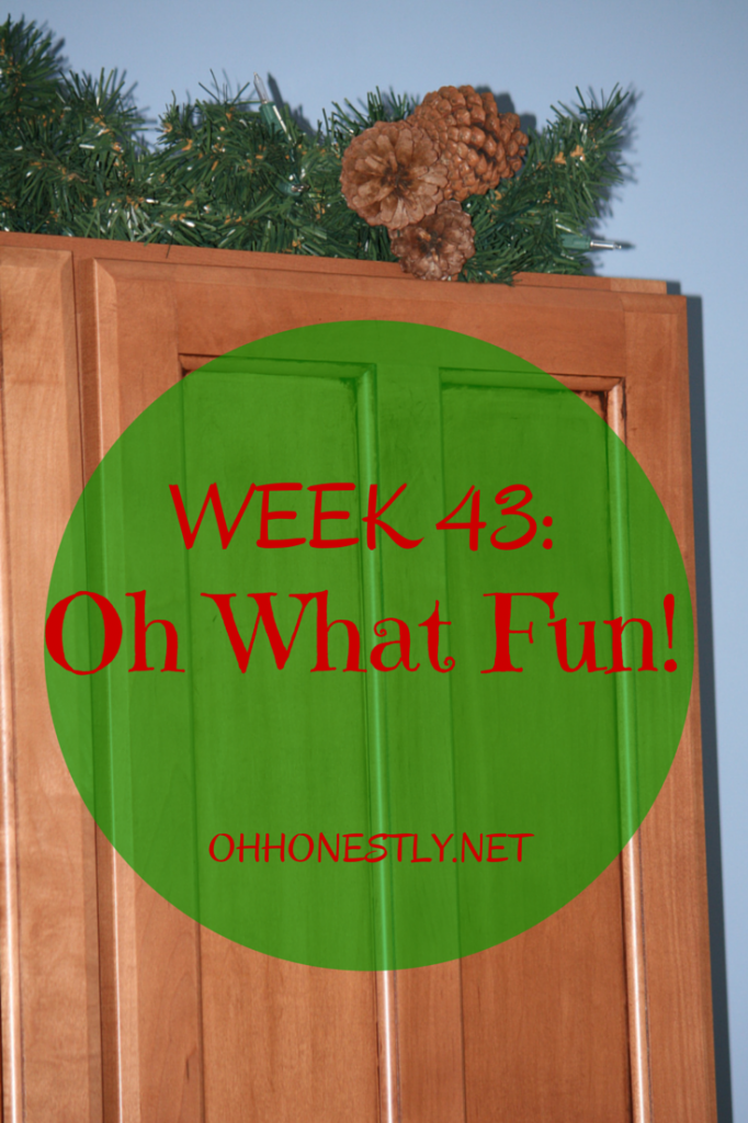 Week 43: Oh What Fun!