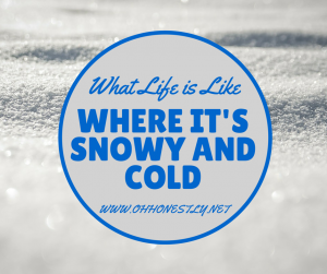 What Life is Like Where It's Snowy and Cold [Video]