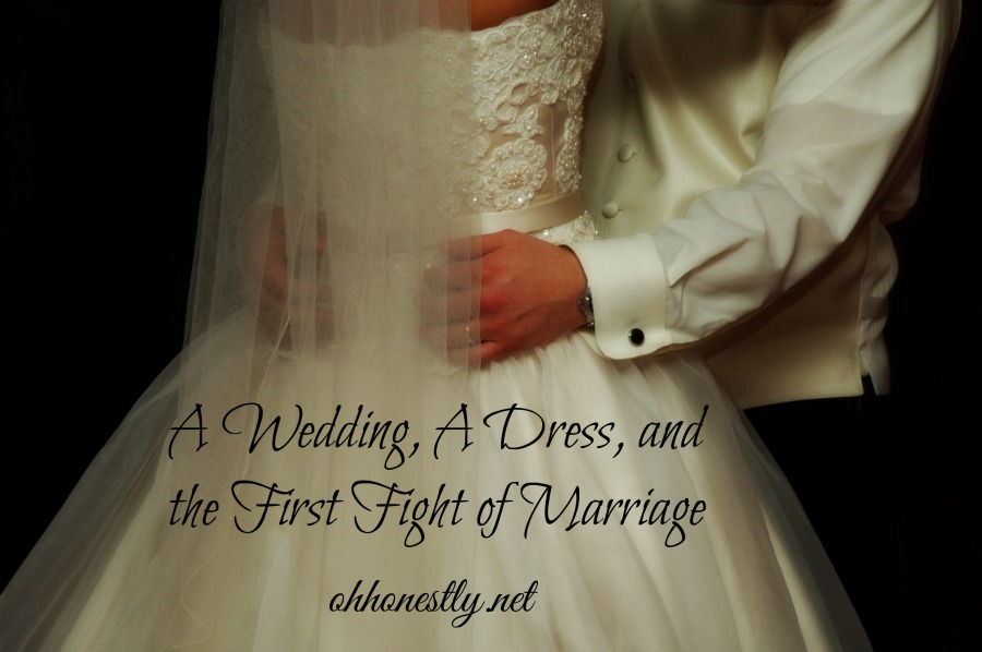 A Wedding, a Dress, and the First Fight of Marriage