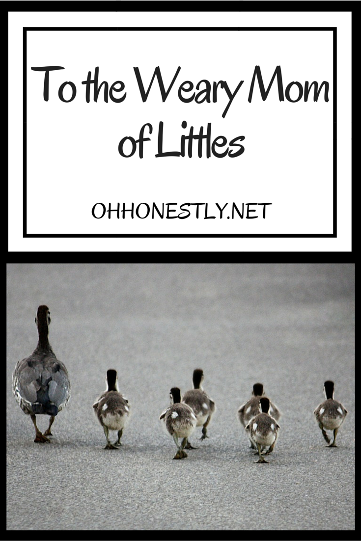 To the Weary Mom of Littles