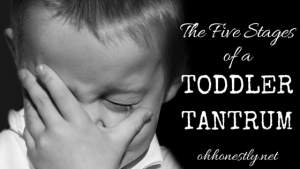 The Five Stages of a Toddler Tantrum
