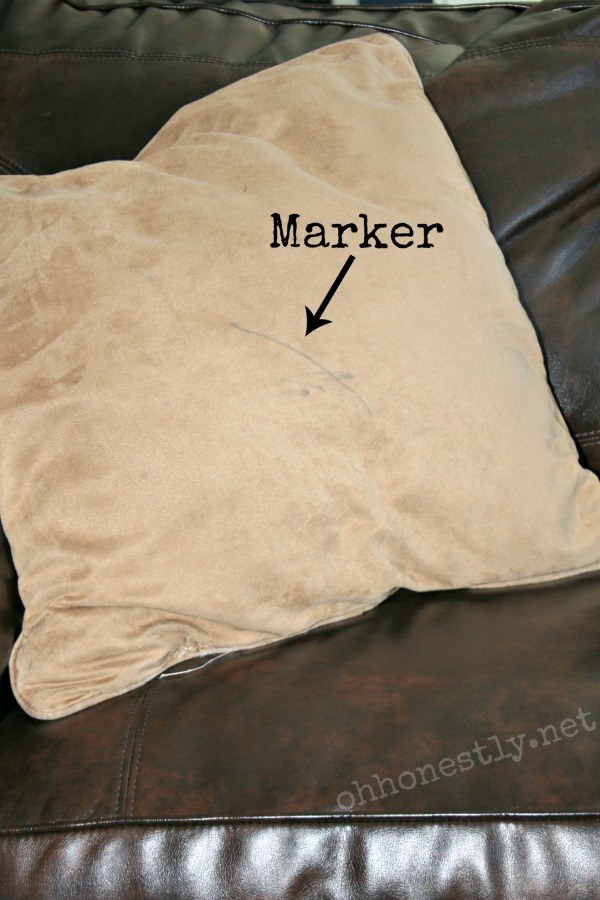 the decorative pillow